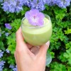 Sublime Key Lime Mousse – A Healthy Vegan Treat!